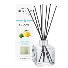 Bouquet parfumé Zeste de Verveine