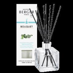 Bouquet parfumé Fraîcheur d'Eucalyptus