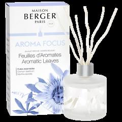 Bouquet parfumé Aroma Focus
