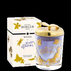 Bougie Parfumée Lolita Lempicka Parme
