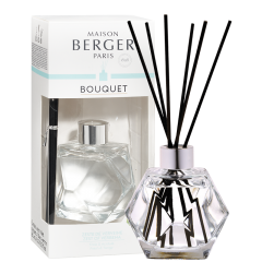 Bouquet parfumé Geometry Transparent & Zeste de Verveine