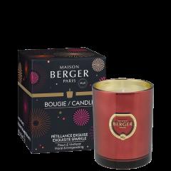 Bougie parfumée Cercle Pétillance Exquise